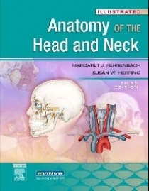 Margaret Fehrenbach Illustrated Anatomy of the Head and Neck